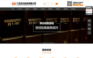 广东迅兴拍卖行官网建设