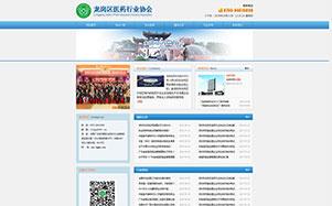 深圳龙岗医药行业协会网站维护