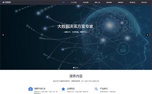 辰智大数据市场调研公司网站建设