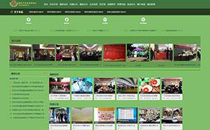 深圳市食品行业协会网站建设维护