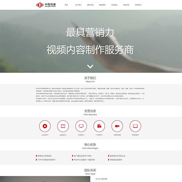 深圳市中视传媒有限公司