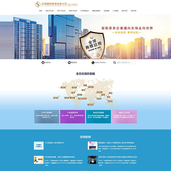天润国际管理有限公司网站建设