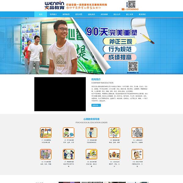 深圳文品心理教育有限公司网站建设